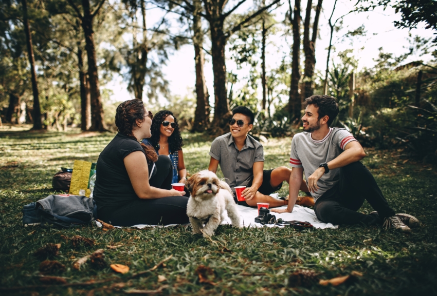 Four students and a dog enjoying a social break from school