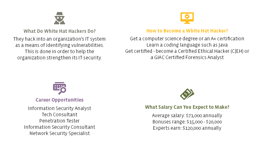 Table laying out some information about white hat hackers
